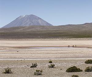 Retornando a Arequipa