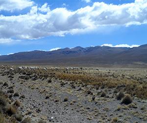 Vista panorámica del Misti, Chachani y Pichu Pichu