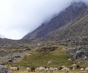 Montaña Cerani